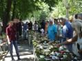 U Niškoj Banji će se održati izložba gljiva