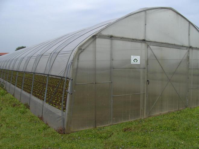 Poljoprivrednici iz Kragujevca dobili plastenike