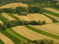 Otkup do 20 hektara državnog zemljišta