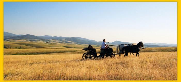Zlatiborsko kulturno leto – Program i dešavanja za avgust 2015. godine
