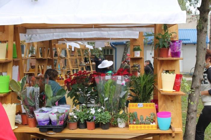 Održani dani meda i cveća u Kovačici
