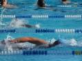 Prvenstvo Niša u plivanju za niške đake