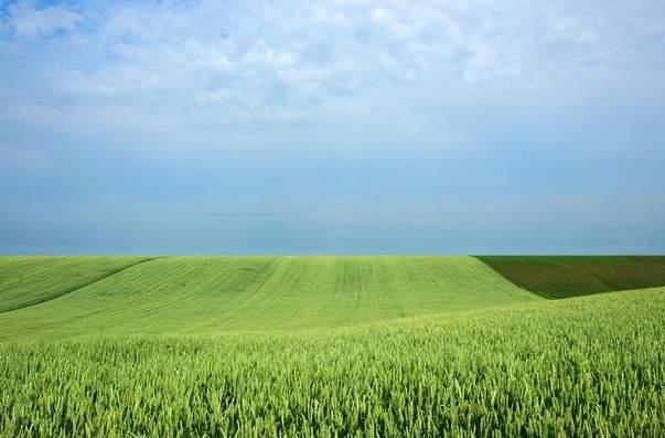 (NE) ZASEJANA SRBIJA – Poljoprivreda i Srbija dvadesetprvog veka – Šesti čin