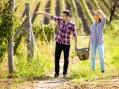 Vinom i rakijom razvijaju seoski turizam