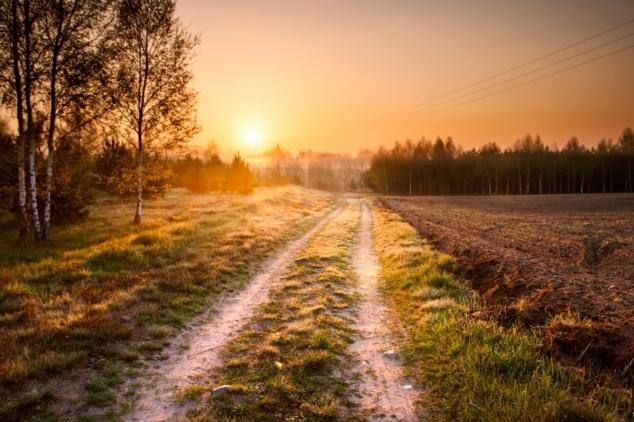 Revitalizacija 905 km atarskih puteva u 120 dana