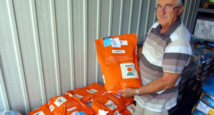 Jagma za semenom uljane repice
