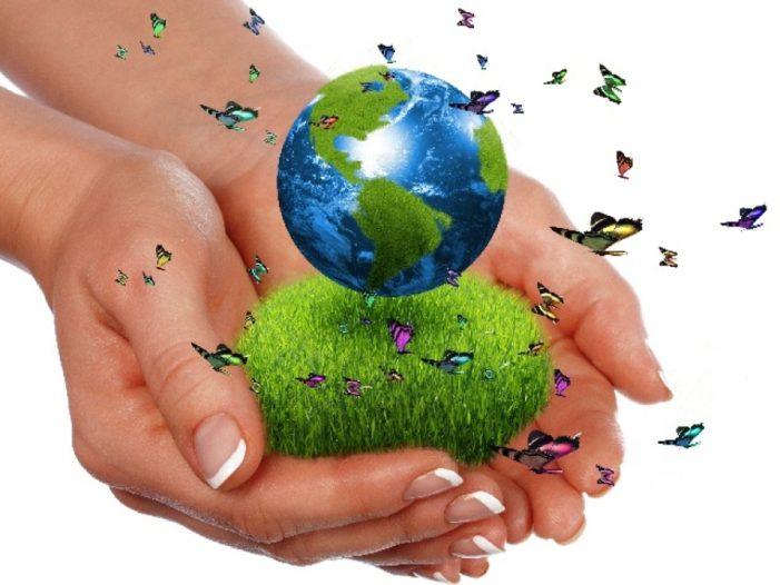 ZELENI FOND za projekte iz oblasti zaštite životne sredine