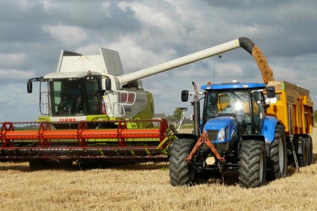 Prihrana za visok prinos pšenice i niže troškove