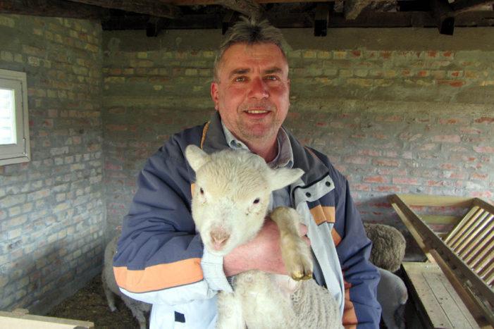 Uz ovce u bolju budućnost